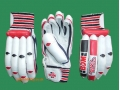 BDM MASTER BLASTER CRICKET BATTING GLOVES (YOUTH)