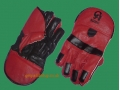 CA Sports SOMO CRICKET WICKET-KEEPING GLOVES (BOYS/YOUTH)