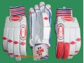 BDM GALAXY CRICKET BATTING GLOVES (YOUTH)