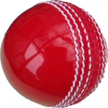 Red Practice Coaching Cricket Ball